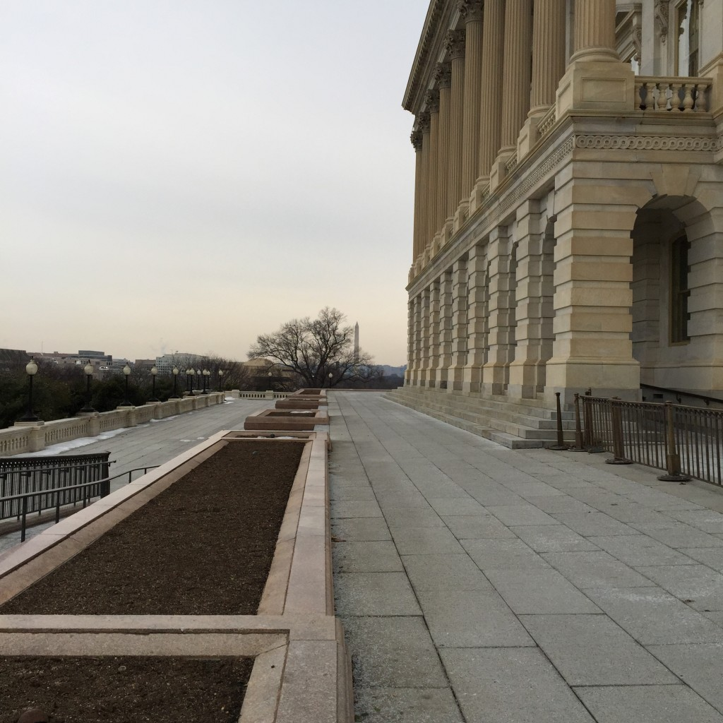 הכניסה לקונגרס, מן הצד של בית הנבחרים