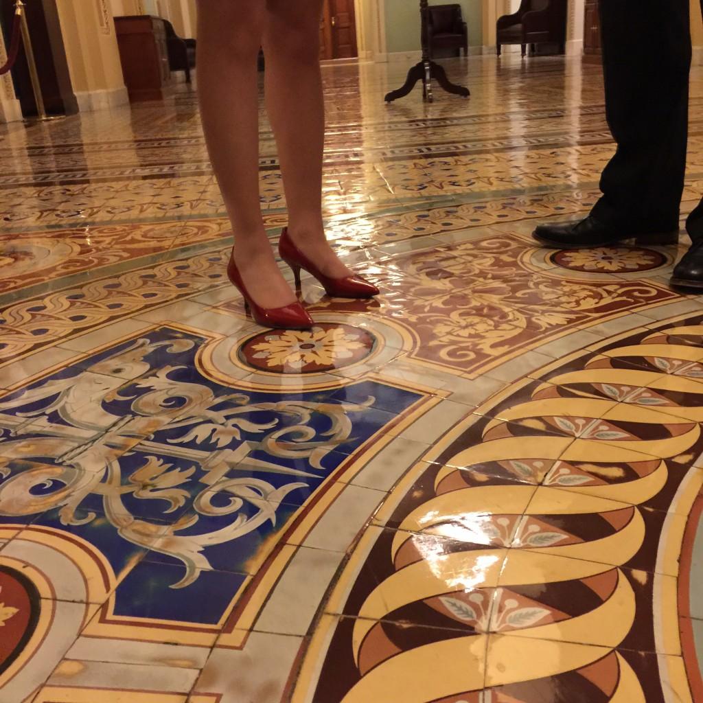 הרצפות המרהיבות של הסנאט