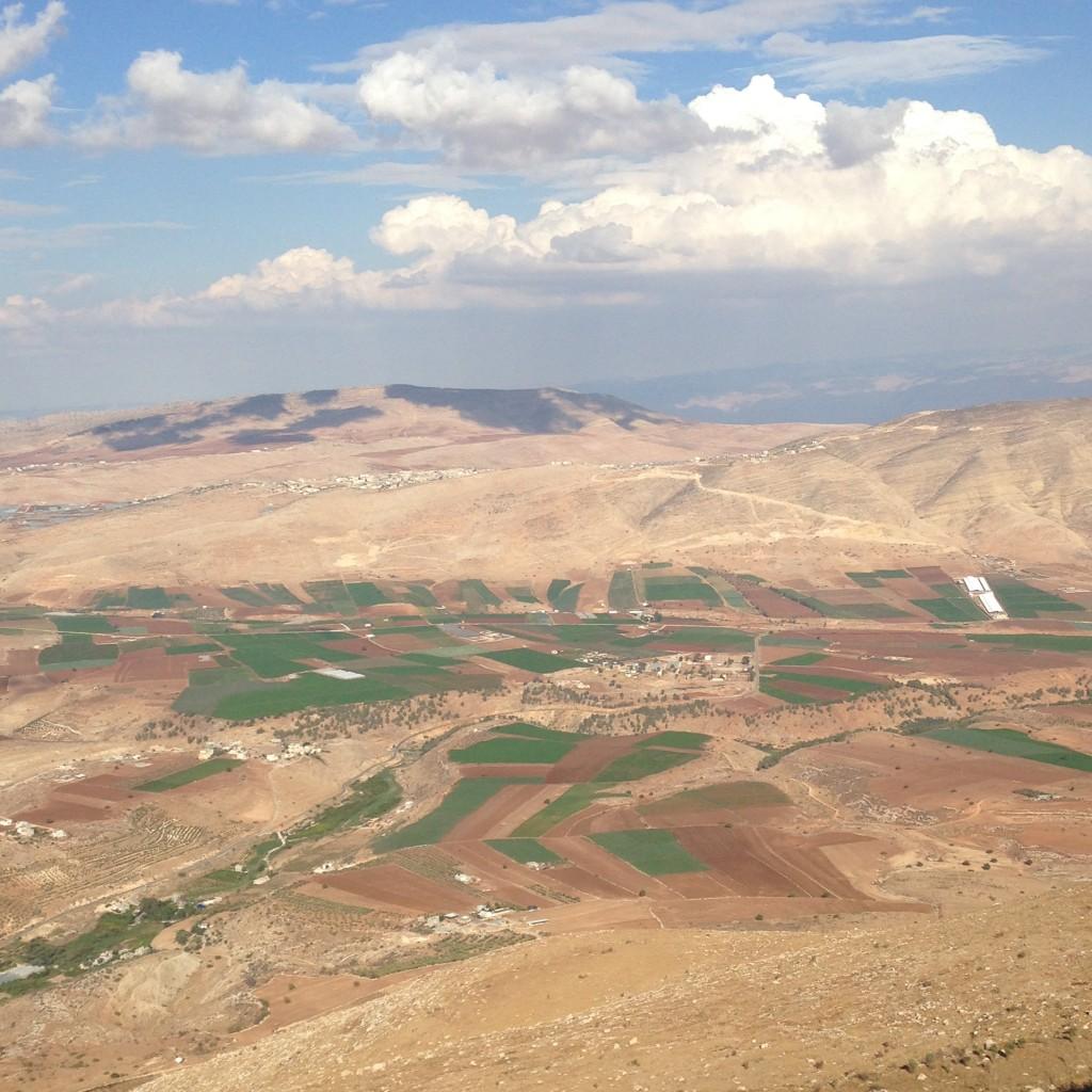 נחל תרצה ואדי אל-פארעה 2